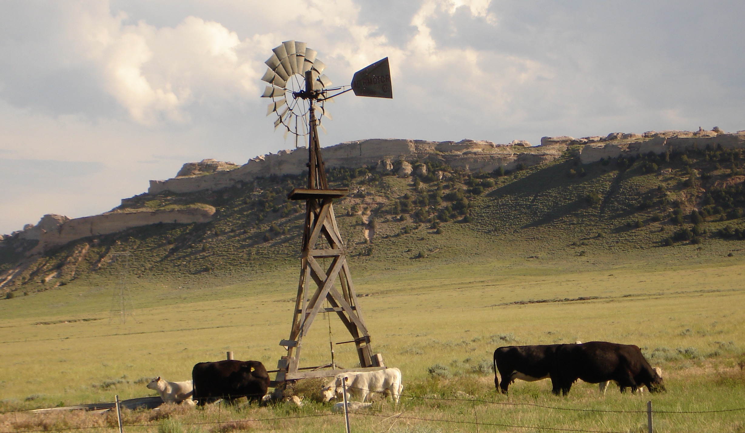 Thaler Land & Livestock LLC