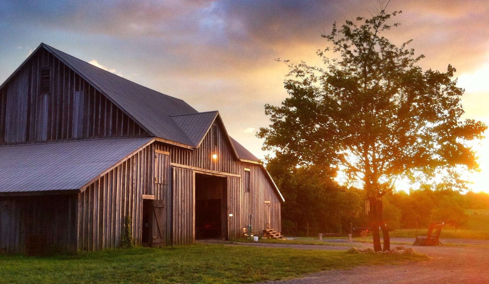 Uploaded by Gorman Farms / CSA